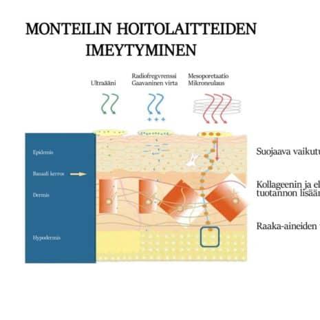 HOITOLAITTEIDEN IMEYTYMINEN_